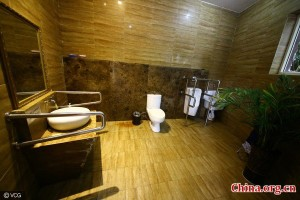 five-star-public-toilet2-600x400